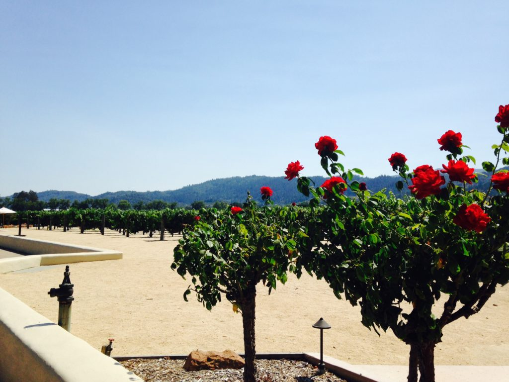 Robert Mondavi Winery 2
